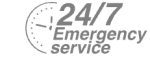 24/7 Emergency Service Pest Control in Isleworth, TW7. Call Now! 020 8166 9746