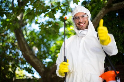 Pest Control in Isleworth, TW7. Call Now 020 8166 9746